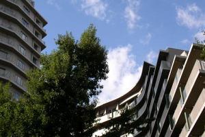 秋空に建物の曲線が映える