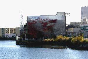 帝蚕倉庫の紅葉